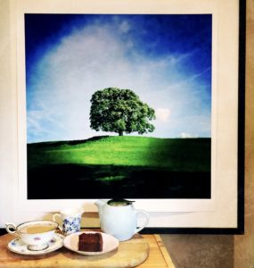 A Tree with afternoon tea